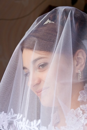 Portrait of the beautiful bride under a veil Stock Photo - 10272116