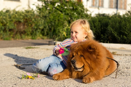 Beautiful girl with the dog outdoor Stock Photo - 10672005