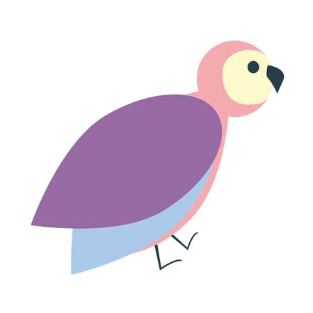 pigeon owl: Cute colorful bird icon, flat illustration vector