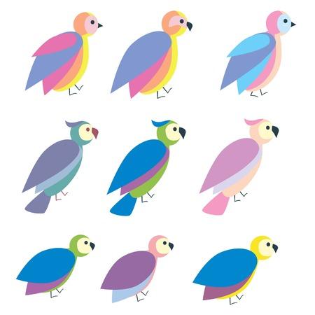 pigeon owl: Set of cute colorful bird icon, flat illustration vector Illustration