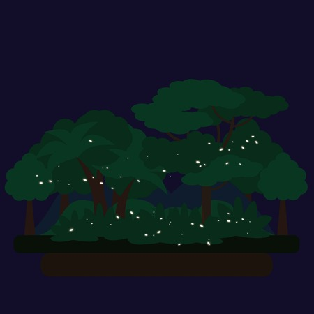 dark forest: Night Dark Forest Green Landscape with mysterious lights, nature. Flat vector illustration