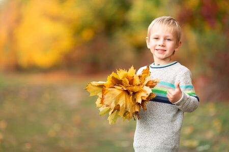 Happy little boy with autumn leaves showing thumb up in the park in autumn