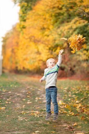 Ragazzino felice che raccoglie foglie d'autunno nel parco in autunno