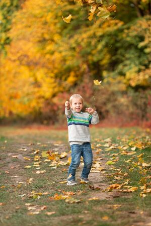 Happy little boy jumping with autumn leaves in the park in autumn