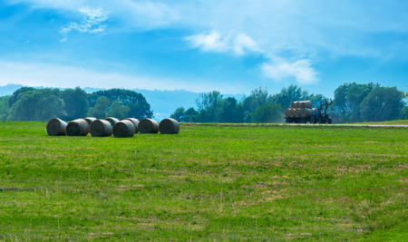 The tractor on the green  field gathers hay photo