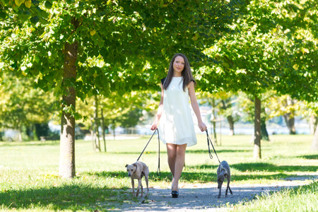 Young attractive girl  dressed elegantly  walking with two greyhounds in the park photo