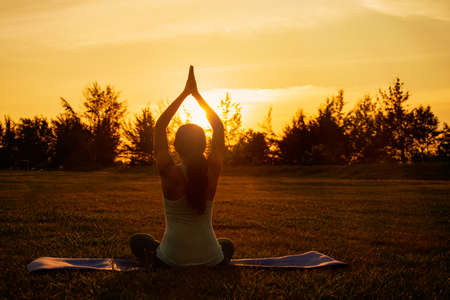 Concept of healthy lifestyle and relaxation-back view of attractive girl in sportswear sitting in lotus position while doing yoga outdoor on sunset Standard-Bild