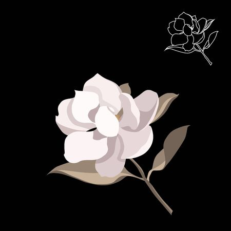 Magnolia-tree flower isolated on black background. Contour silhouette of a flowering branch. Vector illustration