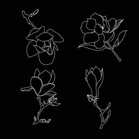 Set of contour drawings of magnolia flowers on a black background. Southern plants silhouettes vector illustration. Ilustrace