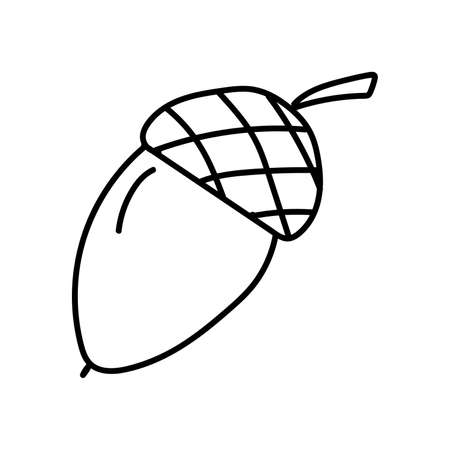 Black outline of an acorn on a white background. EPS 10