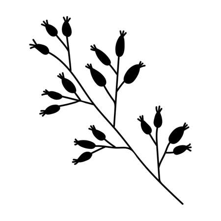Stylized black outline of a branch of wild rose on a white background. EPS 10