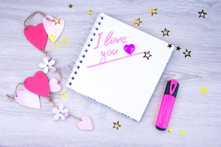 Female write declaration of love in diary