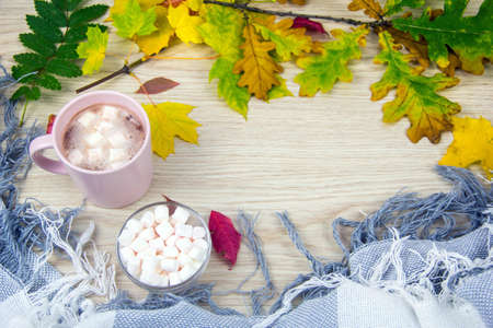 Cocoa and marshmallows. Autumn concept top view. Hot cocoa or hot chocolate with marshmallows on old wooden boards. Coffee, cocoa, hot chocolate, autumn leaf, cozy blanket