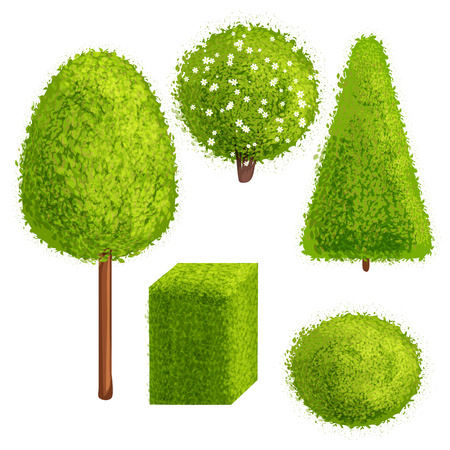 green plants: Set green trees and bushes of different forms. Cartoon style. Deciduous trees. Illustration
