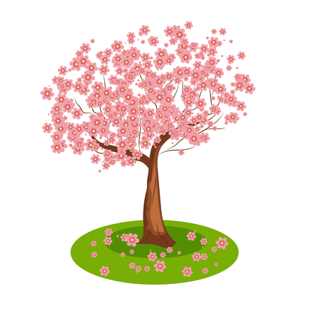 blooms: Isolated cartoon Sakura tree. One tree blooms pink flowers. Illustration