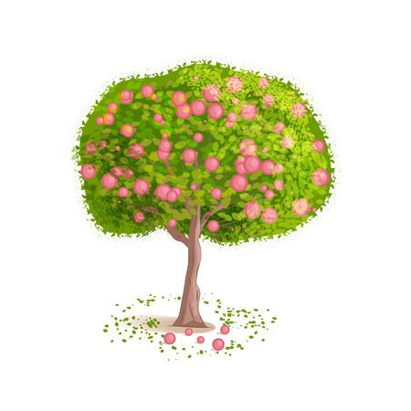 deciduous tree: Isolated tree on a white background. Deciduous tree with green leaves and red fruits. Fallen leaves and fruits around the tree. Illustration