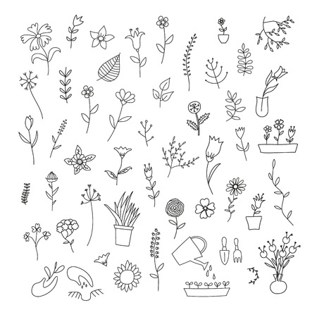 grass blades: Big set of spring plants and flowers, hand-drawn, black contour on white background Illustration