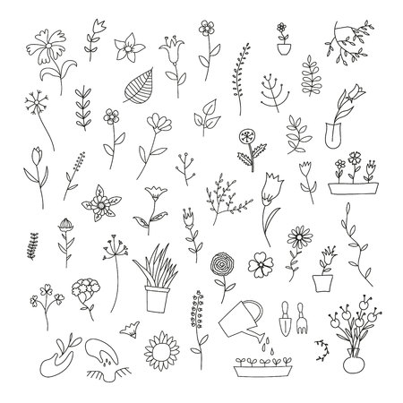 grass blades: Big set of spring plants and flowers, black contour on white background Illustration