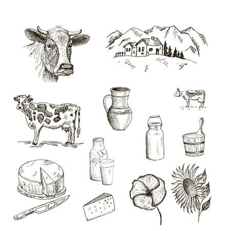 dairy farm: cow and milk. set of vector sketches