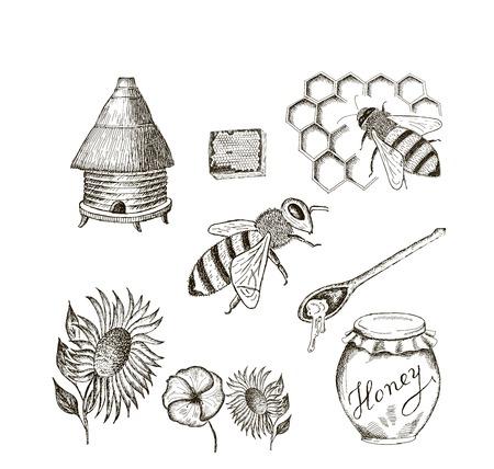 ベクトルのスケッチの蜂蜜セット