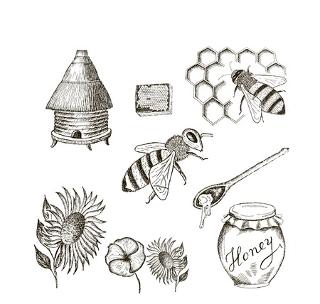 honing set van vector schetsen Stock Illustratie