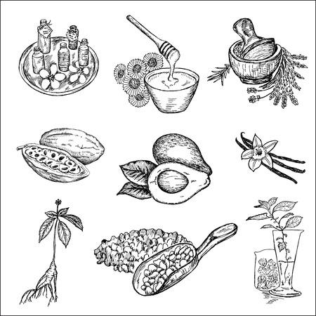 de ingrediënten voor cosmetica. set van vector schetsen Stock Illustratie