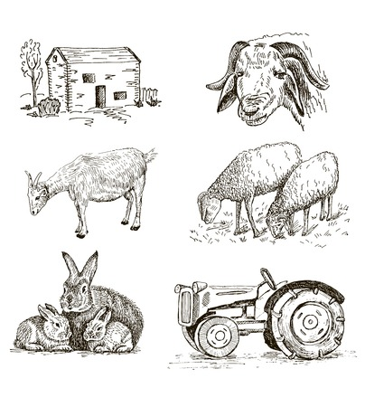 farm. set of vector sketches 일러스트