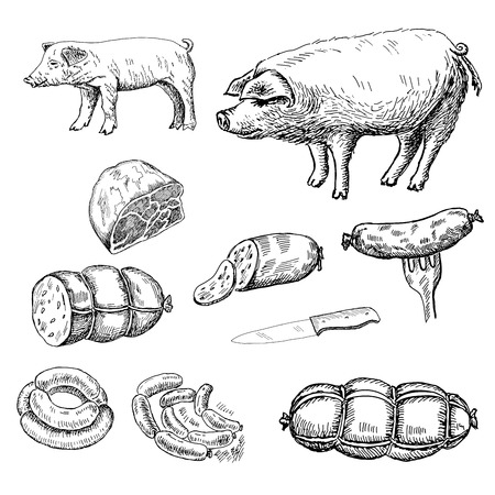 bacon art: sausage. set of vector sketches