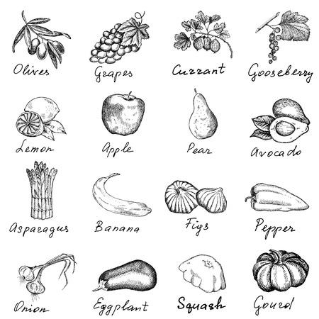 bessen en groenten set van vector schetsen Stock Illustratie