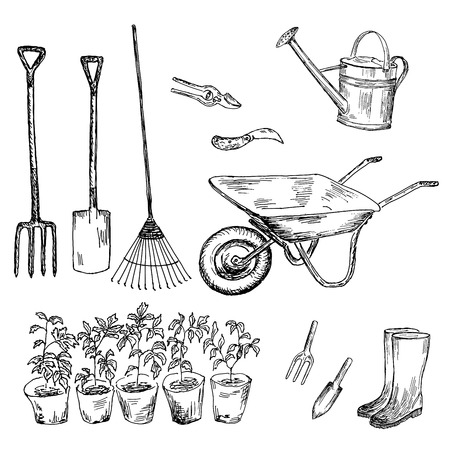 shears: garden  hand drawing set of vector sketches
