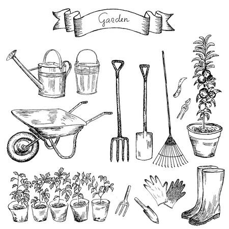 conjunto de dibujos jardín mano de dibujos vectoriales