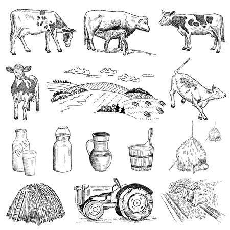 vaca y leche de mano conjunto de dibujos de bocetos vectoriales