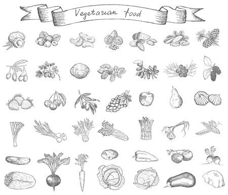 菜食主義の食糧  イラスト・ベクター素材