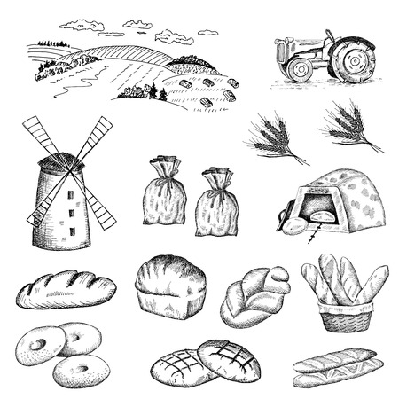 life loaf: cultivation of wheat and bread baking