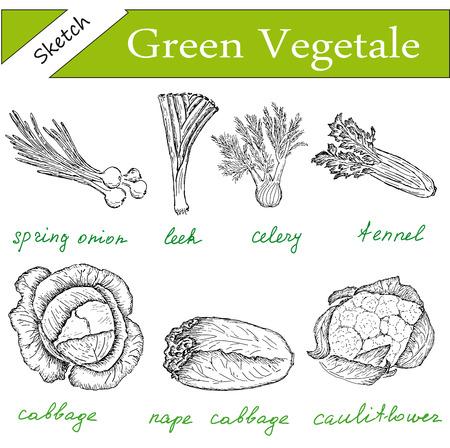 celery: greens set