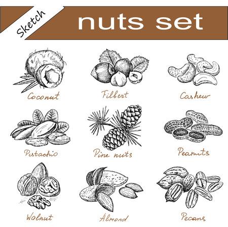 cashew nuts: nuts set
