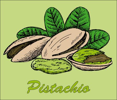 pecans: nut pistachio