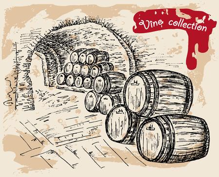 ワイン コレクション