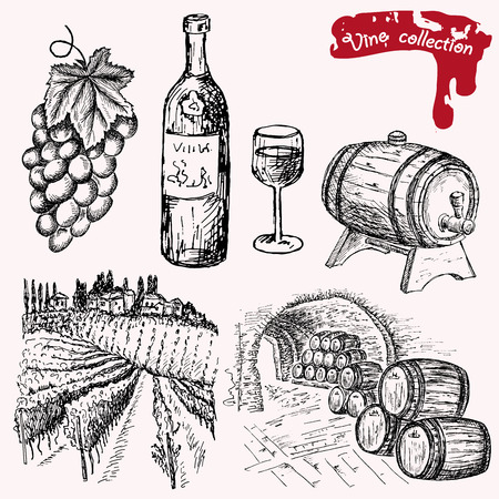 winemaking: wine collection Illustration