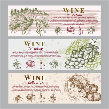 wine collection Vector