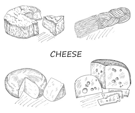 brie: cheese. hand drawing set of vector sketches Stock Illustratie