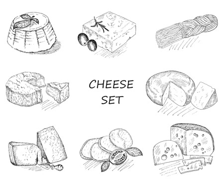 brie: cheese. hand drawing set of vector sketches Illustration