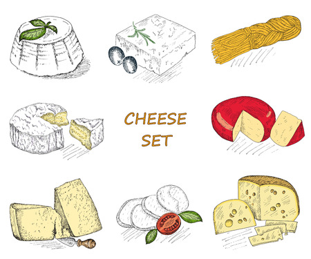 gouda: cheese. hand drawing set of vector sketches Illustration