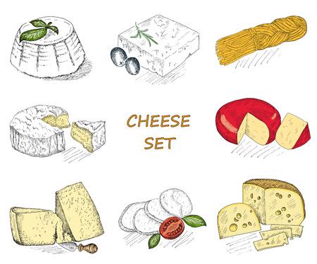 cheese. hand drawing set of vector sketches Иллюстрация