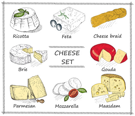 cheese. hand drawing set of vector sketches Vettoriali