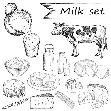 vintage illustration: milk. hand drawing set of vector sketches Illustration