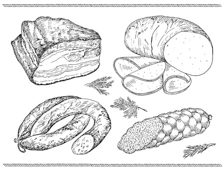 meat sausage. hand drawing set of vector sketches