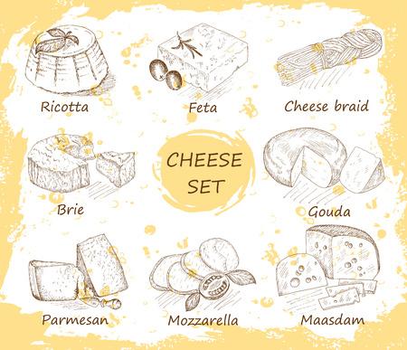 parmesan: cheese. hand drawing set of vector sketches Illustration