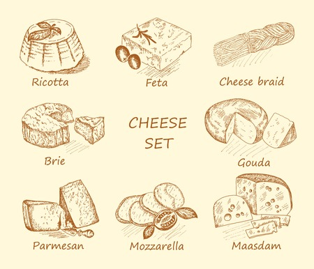 hand set: cheese. hand drawing set of vector sketches Illustration