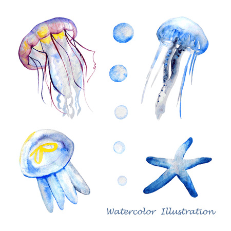 sketch drawing: Watercolor jellyfish. Hand painted realistic vector illustration. Illustration